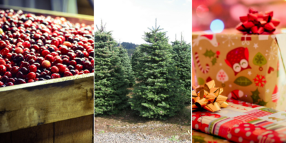 Cranberries, Christmas Trees and Presents