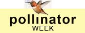 Pollinator Week2