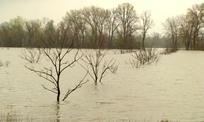 Help For Flood Affected Farmers