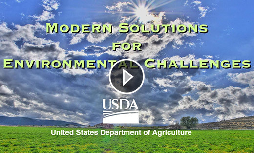 Modern Solutions for Environmental Challenges
