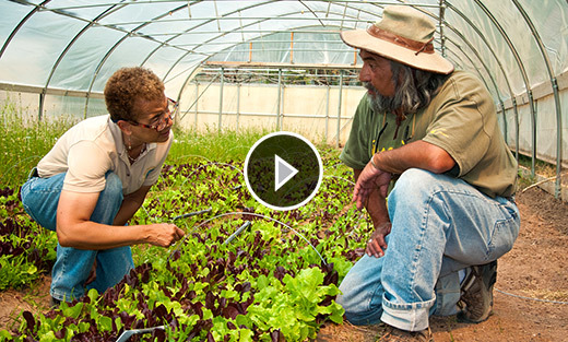 Video still of two farmers talking in a hoop house