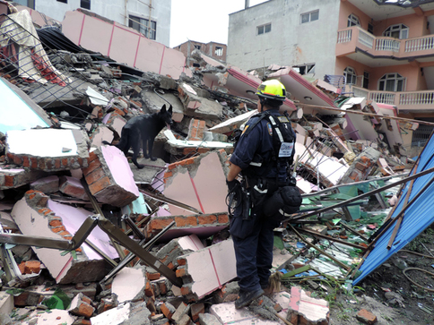 Member of FEMA urban search and rescue team going through the rubble in Nepal.