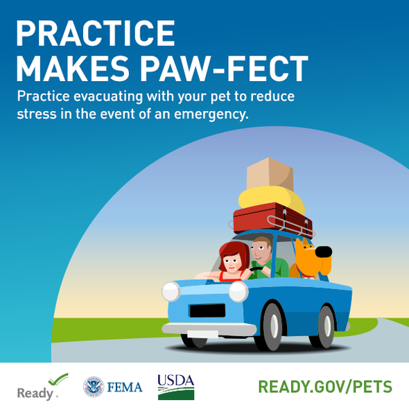"Practice Makes Paw-Fect. Practice evacuating with your pet to reduce stress in the event of an emergency."" ready.gov/pets"