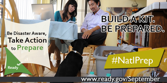 National Preparedness Month for pets and animals