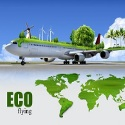 ecological flying