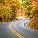 road in the fall