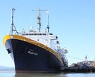 A photo of the ship the TS Golden Bear.