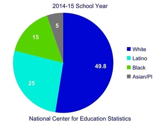 Pie chart indicating that 49.8% of students are White, 25% are Latino, 15% are Black and 5% are Asian or Pacific Islanders