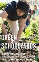 School yard report