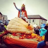 largest pumpkin contest winner