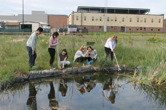 Students performing water quality testing in outdoor classroom