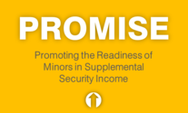 PROMISE Center logo