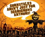 Cornstalk Blog Banner