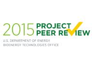 Peer Review 2015