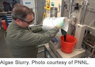 algae slurry - PNNL