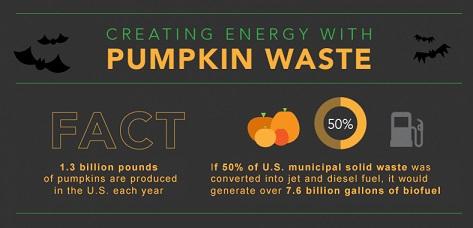 Pumpkin Power Infographic 2015