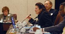 Advisory Committee Panel
