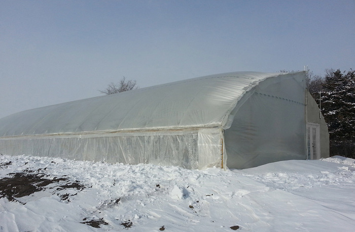 Large greenhouse with snow on the ground outside