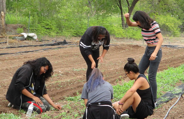 NACA Students Planting