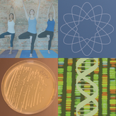 2015 NCCIH Notable Research