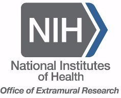 NIH SBIR