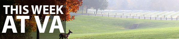VA National Cemetery