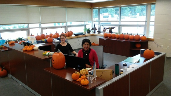 Front Office pumpkins