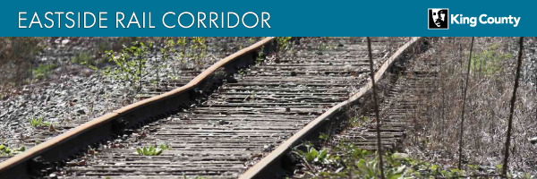 ERC rail removal