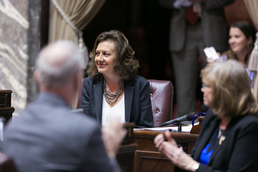 lynda wilson first senate bill