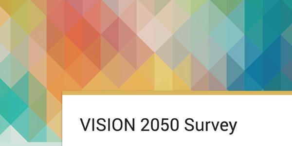 Screenshot of survey