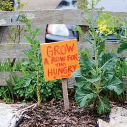 P-Patch Giving Garden
