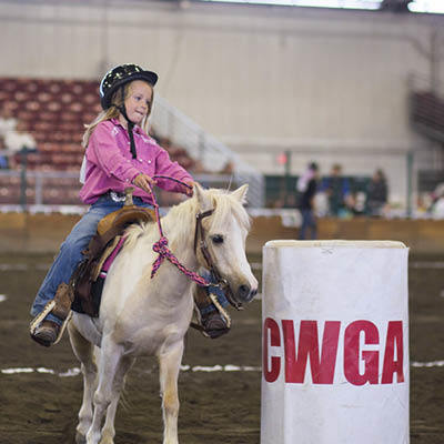 2017 Horse Show