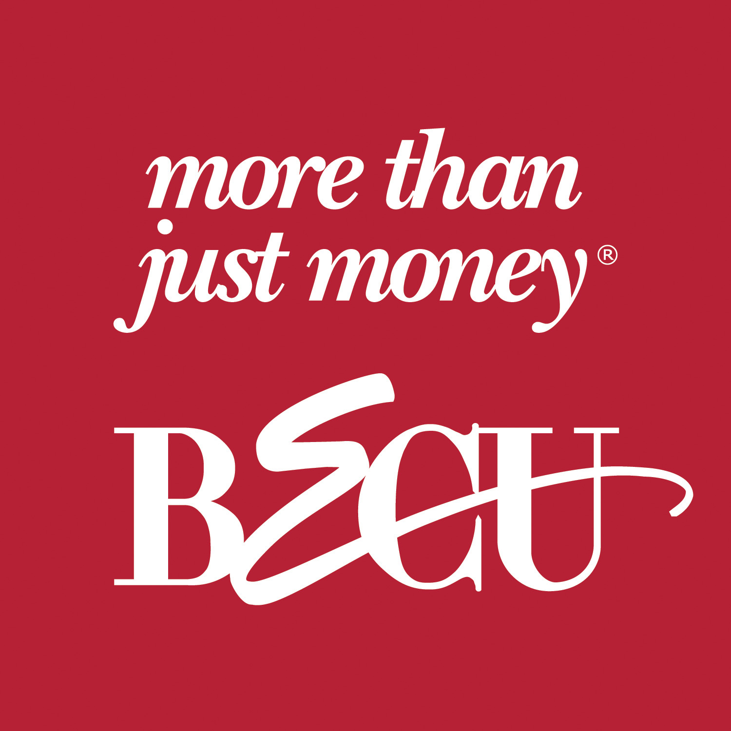 BECU more than just money