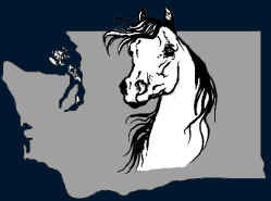 Mid Summer Classic Arabian Horse Show