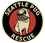 Seattle Pug Gala