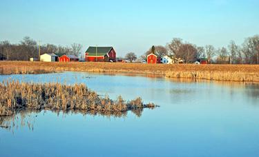 Farm and Marsh