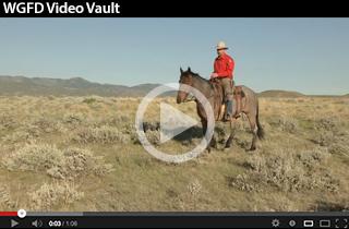 WGFD Video Vault