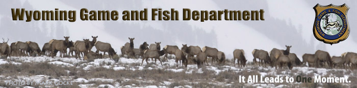 After successful first year hunting license raffle tickets for Wyoming fishing license