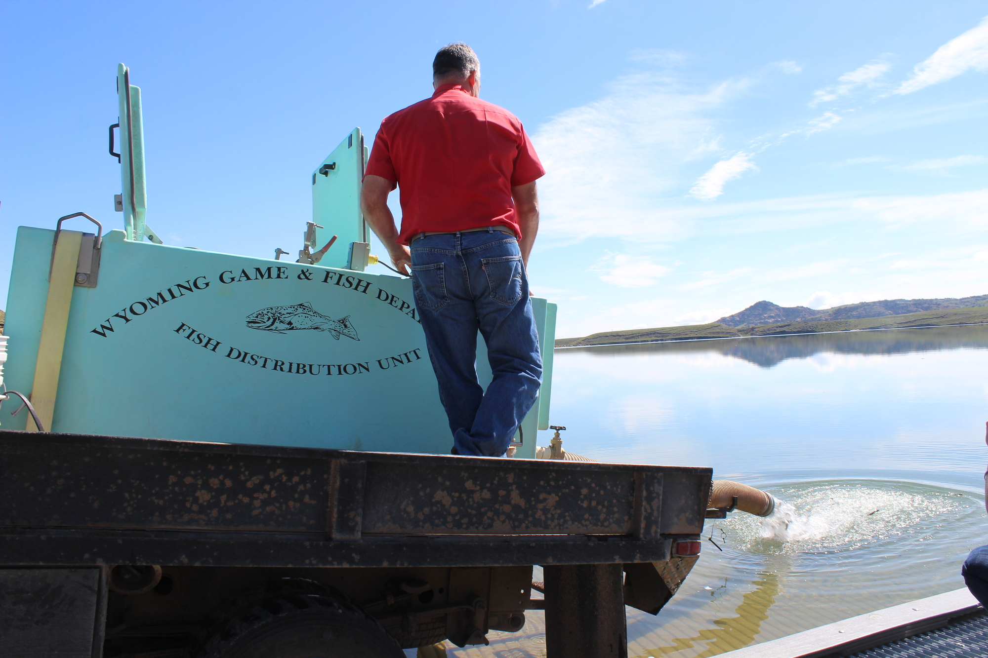 Tiger trout stocked in lower sunshine reservoir for Wyoming game and fish regulations