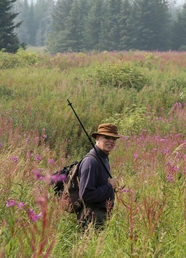 man in fireweed field