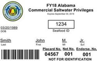 Waterproof License - front
