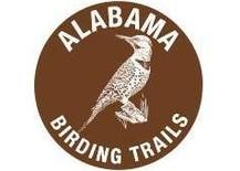 birding trail 2