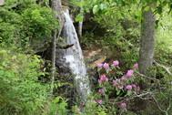 DSP Indian Falls