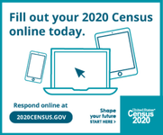 Fill Census Out Online
