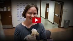 COVID-19 Animal Care & Control Video