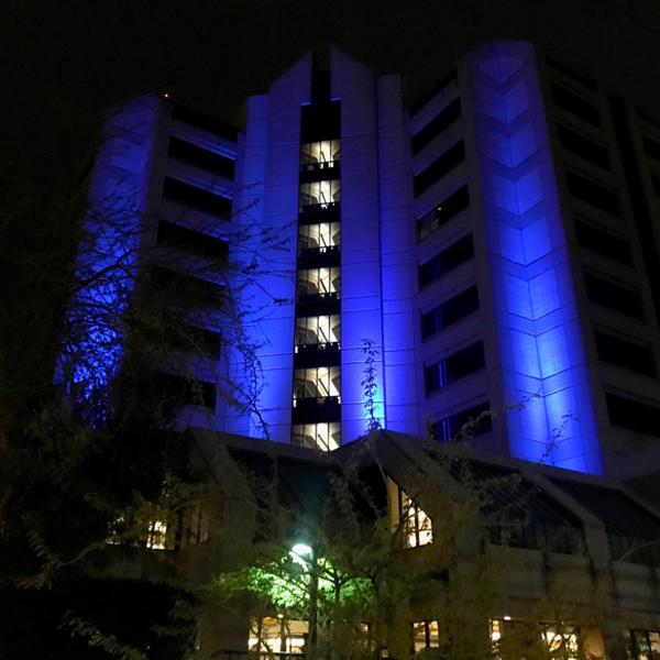 Admin Building Lit Blue