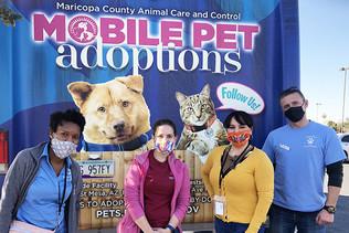 Mobile Adoptions