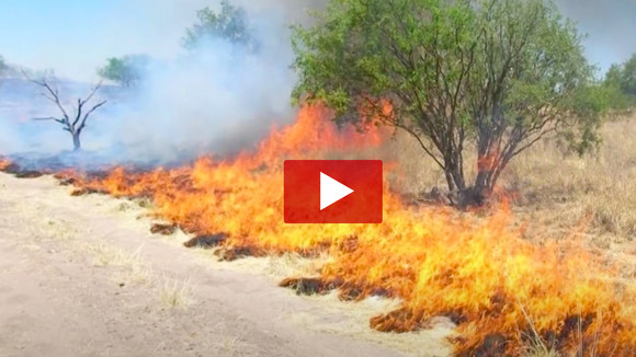 VIDEO: Fire Safety & Prevention