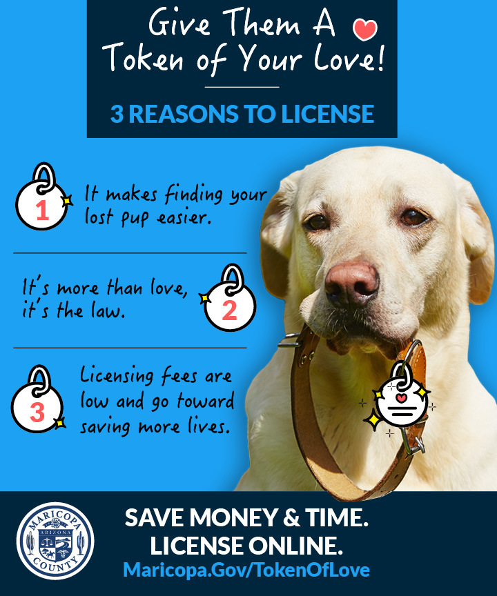 License Your Pet