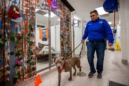 Michele Figueroa and dog